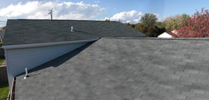 roof cost 1